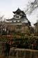 犬山城のハ真.jpg